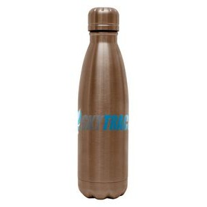 Hydro-Soul with Copper Lining Water Bottle - 17 oz.